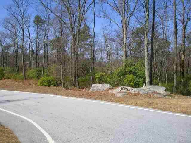 800 Red Sky Trail, Landrum, SC 29356 (#272877) :: Century 21 Blackwell & Co. Realty, Inc.