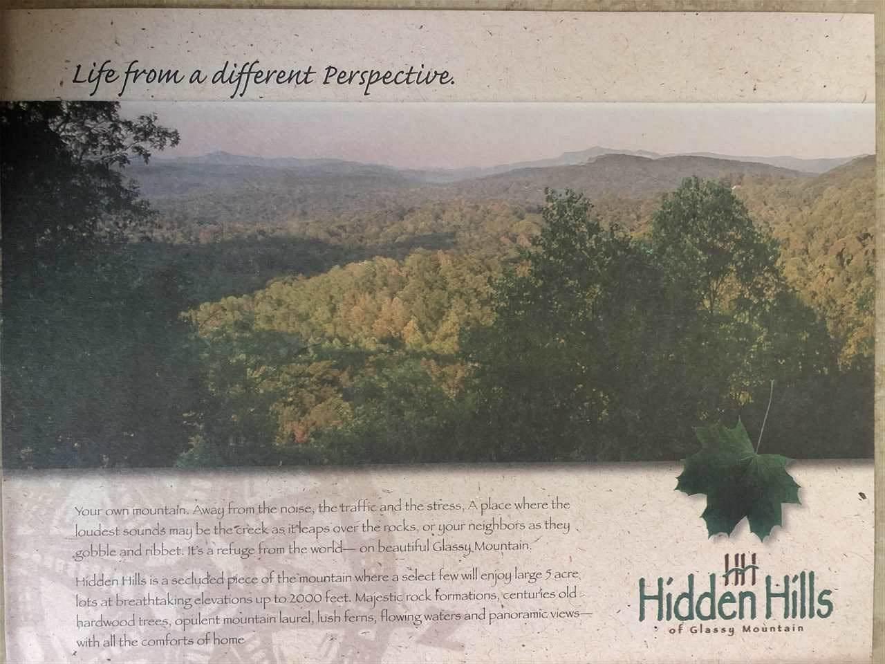 Lot 14 Hidden Glory Drive - Photo 1