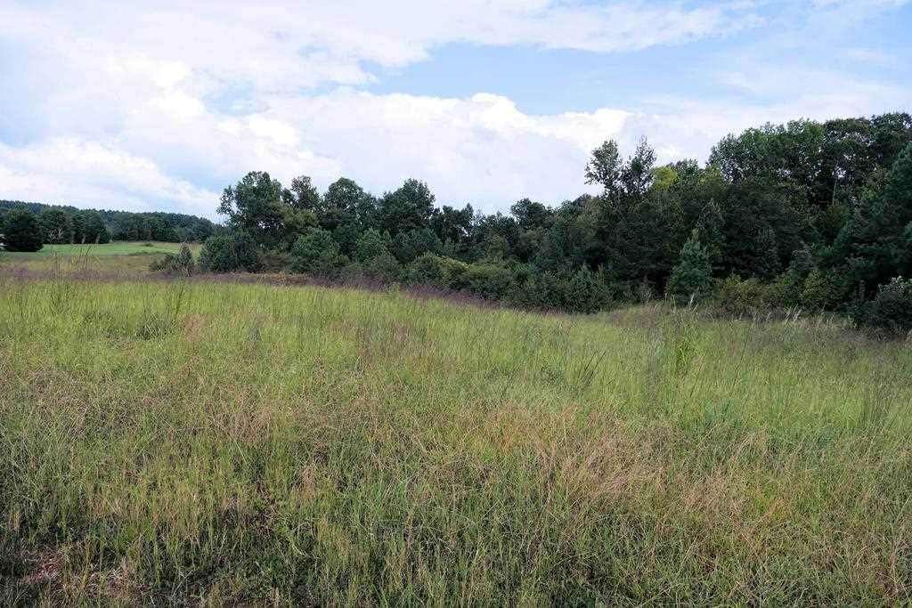 323 Grindall Ford Rd - Photo 1