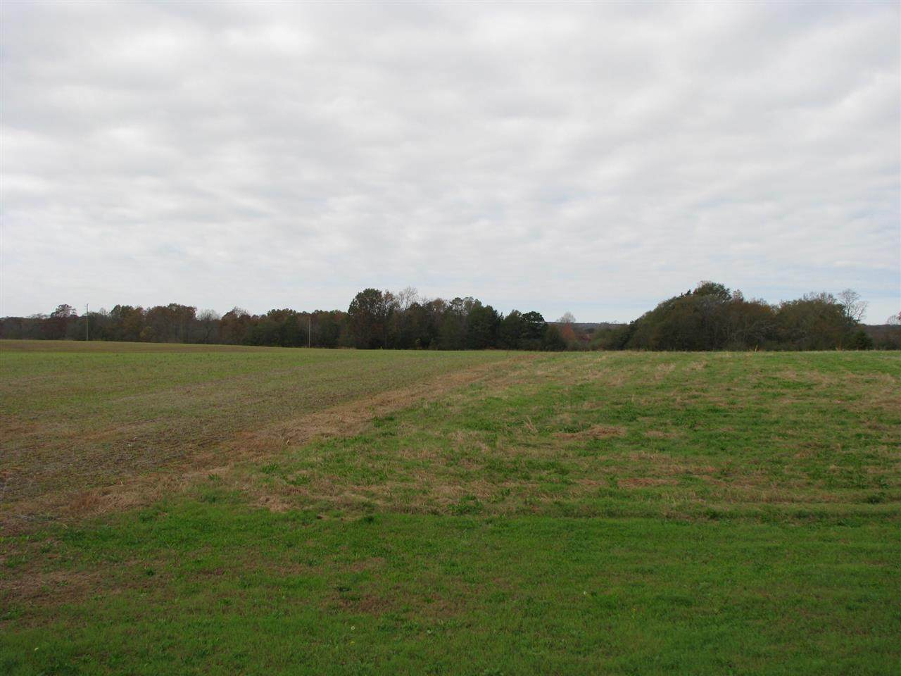 Tract A Grassy Pond Creek Rd - Photo 1