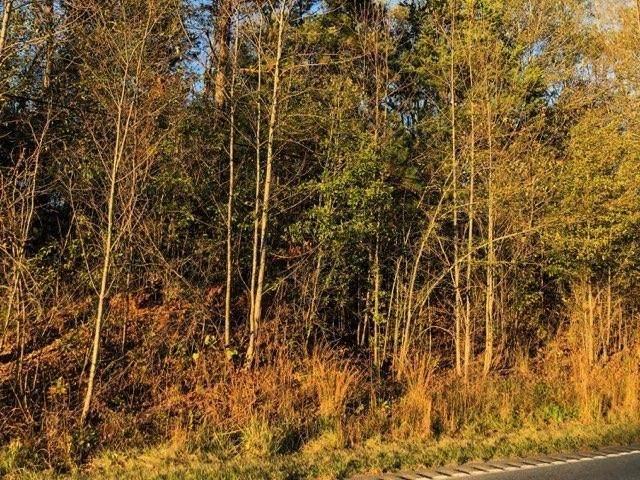 00 Highway 92 - Photo 1