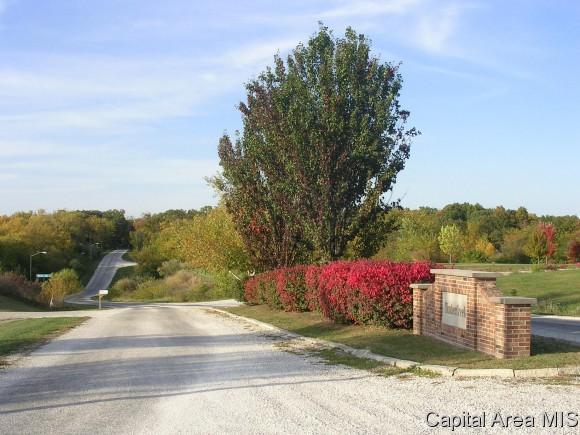 105 Oak Hollow Dr., Jacksonville, IL 62650 (MLS #142873) :: Killebrew & Co Real Estate Team