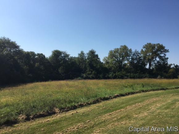 42 South Meadow Lane, Petersburg, IL 62675 (MLS #165693) :: Killebrew & Co Real Estate Team