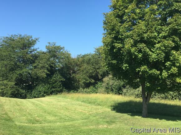 57 Oak Grove Drive, Petersburg, IL 62675 (MLS #165702) :: Killebrew & Co Real Estate Team