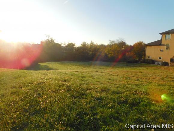300 Grindstone, Chatham, IL 62629 (MLS #166824) :: Killebrew & Co Real Estate Team