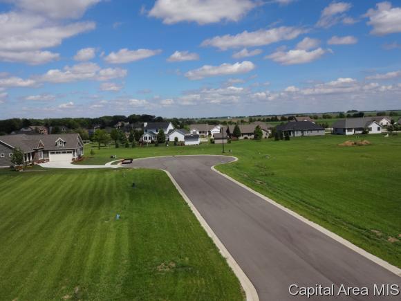901 Winding Oaks Drive, Williamsville, IL 62693 (MLS #171288) :: Killebrew & Co Real Estate Team