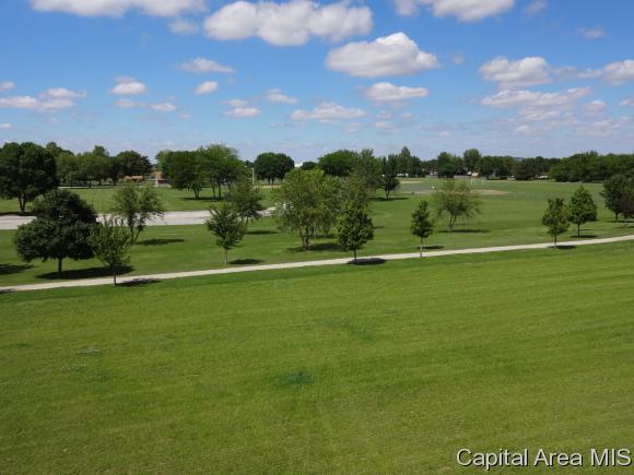 304 Burr Oak Drive, Williamsville, IL 62693 (MLS #171289) :: Killebrew & Co Real Estate Team