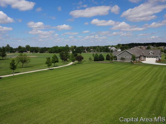 920 Chesnut Oak Circle, Williamsville, IL 62693 (MLS #171293) :: Killebrew & Co Real Estate Team