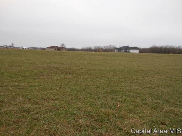 720 Timber Ridge Rd, Mechanicsburg, IL 62545 (MLS #171584) :: Killebrew & Co Real Estate Team