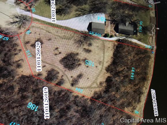 185 Timberline Ct, Dahinda, IL 61428 (MLS #171816) :: Killebrew & Co Real Estate Team