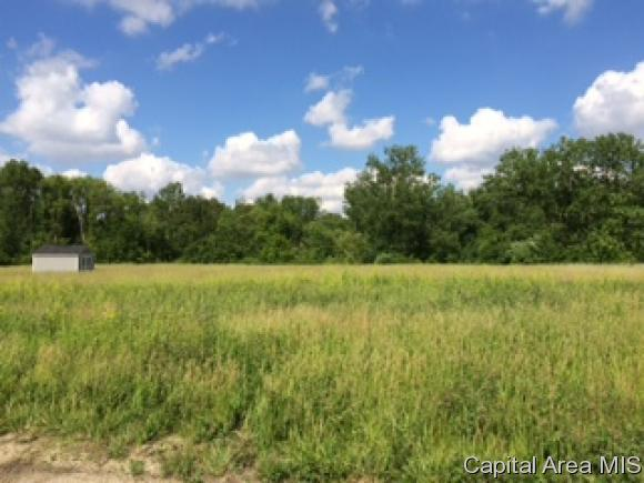 Lot 7 Buckhart Lake Estates, Rochester, IL 62563 (MLS #172615) :: Killebrew & Co Real Estate Team