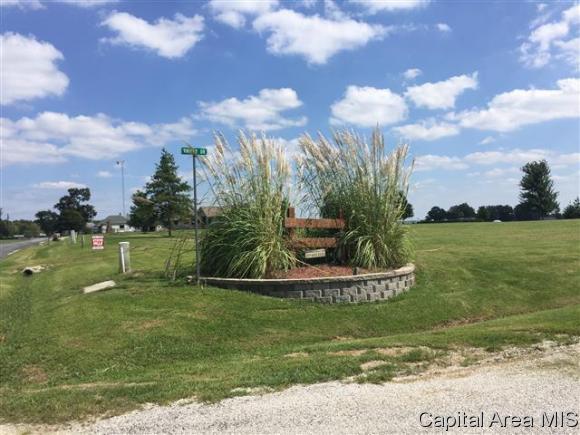 526 Coultas Rd, Winchester, IL 62694 (MLS #174972) :: Killebrew & Co Real Estate Team