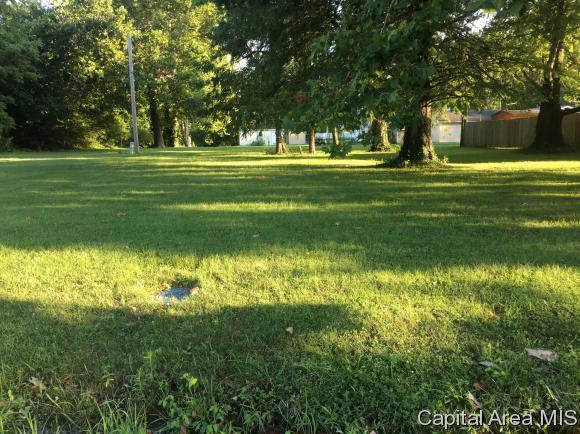 Star Avenue, Springfield, IL 62707 (MLS #175049) :: Killebrew & Co Real Estate Team