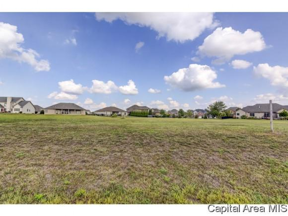 Lot 53 Breckenridge Manor, Chatham, IL 62629 (MLS #176075) :: Killebrew & Co Real Estate Team