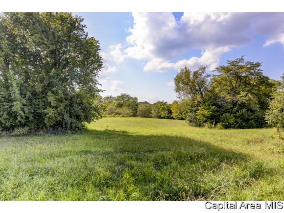 Lot 75 Breckenridge Manor, Chatham, IL 62629 (MLS #176081) :: Killebrew & Co Real Estate Team