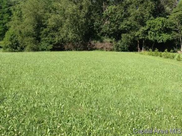 Lot 25 Lone Oak, Petersburg, IL 62675 (MLS #176289) :: Killebrew & Co Real Estate Team