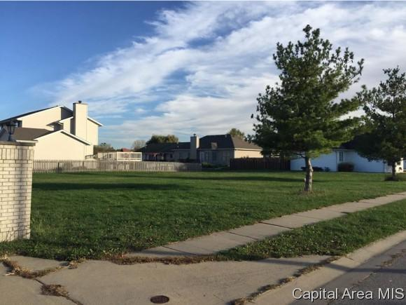 4412 S Venetian, Springfield, IL 62703 (MLS #177197) :: Killebrew & Co Real Estate Team