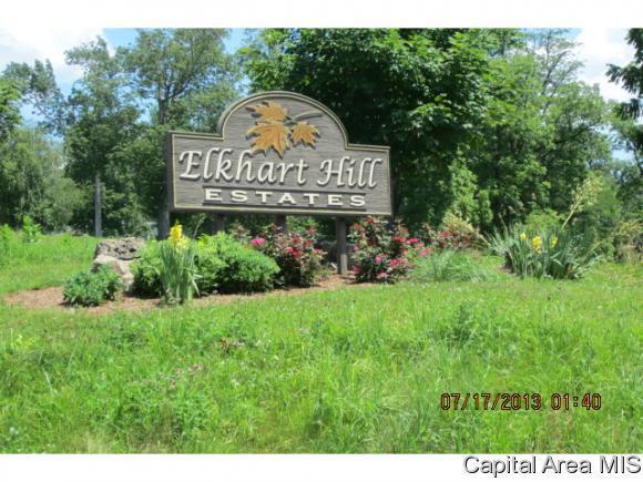 4 Governors Dr, Elkhart, IL 62634 (MLS #177580) :: Killebrew & Co Real Estate Team