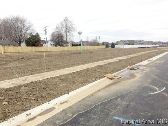327/323 Waterwheel Drive, Rochester, IL 62563 (MLS #178058) :: Killebrew & Co Real Estate Team