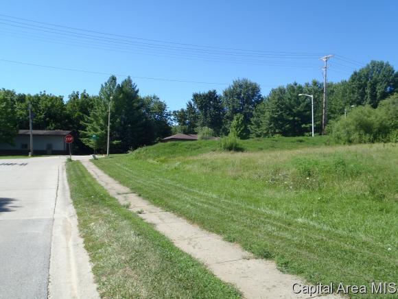 Boulder Point, Springfield, IL 62711 (MLS #180254) :: Killebrew & Co Real Estate Team