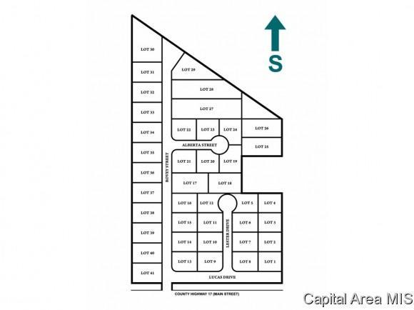 Lots 1 Sunset Village, Farmersville, IL 62533 (MLS #181015) :: Killebrew & Co Real Estate Team