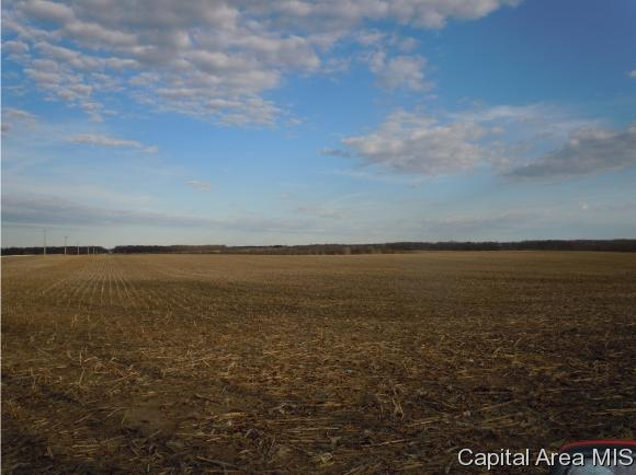 Section 3 County Line Rd 00, Plymouth, IL 62367 (MLS #181309) :: Killebrew & Co Real Estate Team