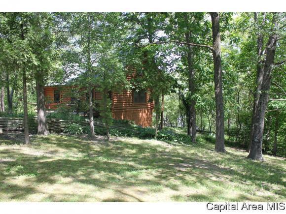 274 Big Valley Road, Virginia, IL 62691 (MLS #181626) :: Killebrew & Co Real Estate Team