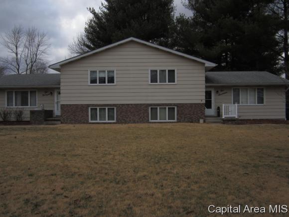 517 & 519 Sattley St, Rochester, IL 62563 (MLS #182098) :: Killebrew & Co Real Estate Team