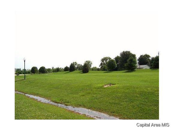 105 Adele Court, Jacksonville, IL 62650 (MLS #182208) :: Killebrew & Co Real Estate Team
