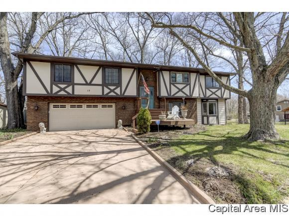 17 Dean Park Dr, Springfield, IL 62707 (MLS #182272) :: Killebrew & Co Real Estate Team