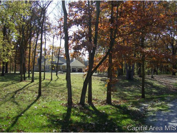 Lot 9 Brock Court, Carlinville, IL 62626 (MLS #182361) :: Killebrew & Co Real Estate Team