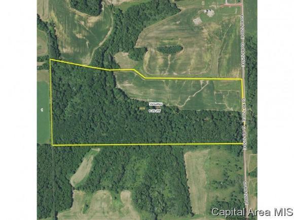 County Road 1250E, Versailles, IL 62353 (MLS #182385) :: Killebrew & Co Real Estate Team