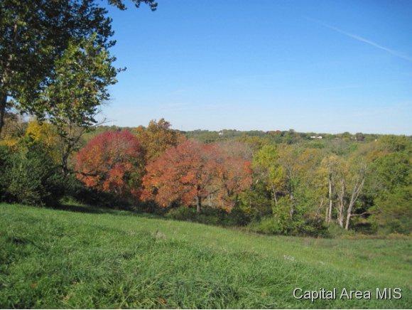 42 Vista Ridge, Petersburg, IL 62675 (MLS #182835) :: Killebrew & Co Real Estate Team