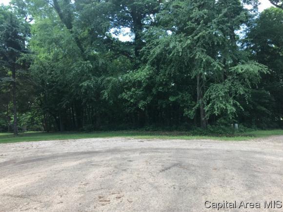 9 Timber Ln, Mt Pulaski, IL 62548 (MLS #183279) :: Killebrew & Co Real Estate Team