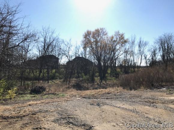 2000 Fox Haven, Chatham, IL 62629 (MLS #183411) :: Killebrew & Co Real Estate Team
