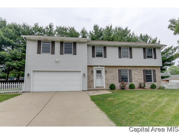 1225 Old Crows Way, Springfield, IL 62712 (MLS #183436) :: Killebrew & Co Real Estate Team