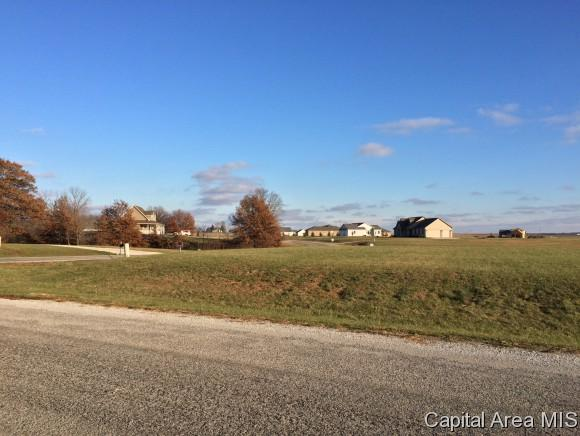 730 Timber Ridge, Mechanicsburg, IL 62545 (MLS #183465) :: Killebrew & Co Real Estate Team