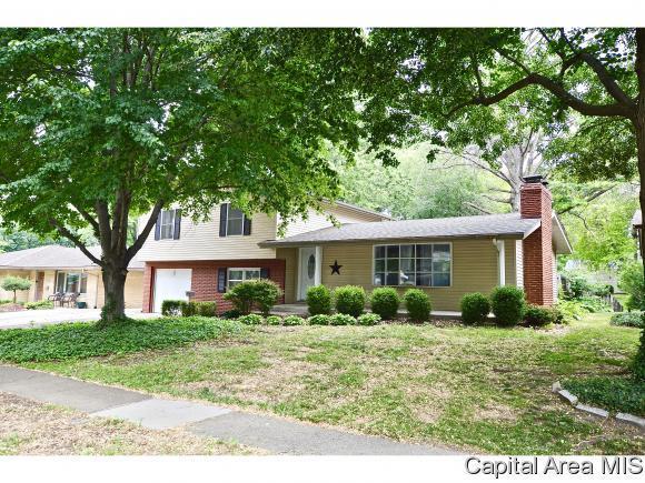 2332 S Noble, Springfield, IL 62704 (MLS #183734) :: Killebrew & Co Real Estate Team