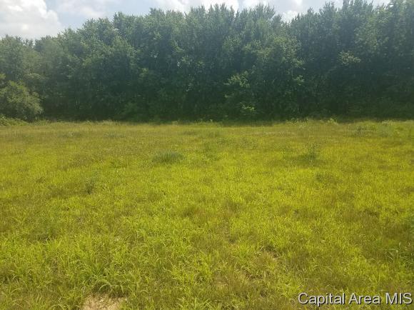 220 Fox Ln, Mechanicsburg, IL 62545 (MLS #184022) :: Killebrew & Co Real Estate Team
