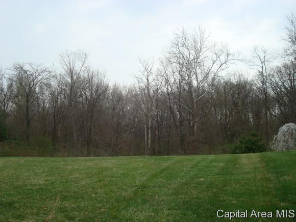 2311 Winners Circle, Springfield, IL 62702 (MLS #184104) :: Killebrew & Co Real Estate Team