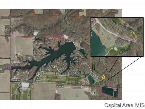 286 Beyers Lake Est, Pana, IL 62557 (MLS #184478) :: Killebrew & Co Real Estate Team