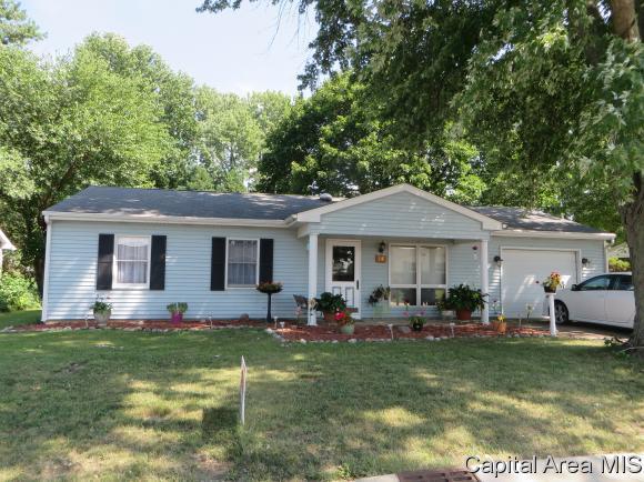 14 Birch Ln, Williamsville, IL 62693 (MLS #184796) :: Killebrew & Co Real Estate Team