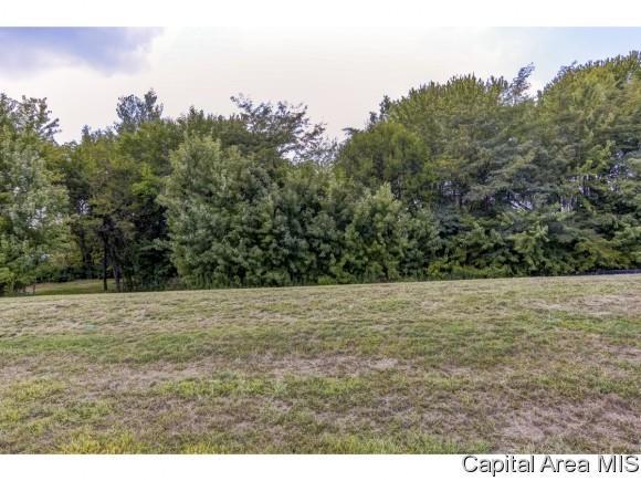 Lot 42 Breckenridge Manor, Chatham, IL 62629 (MLS #185581) :: Killebrew & Co Real Estate Team