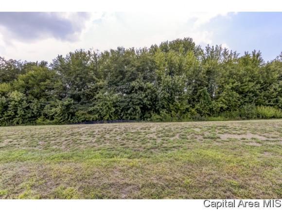 Lot 43 Breckenridge Manor, Chatham, IL 62629 (MLS #185582) :: Killebrew & Co Real Estate Team