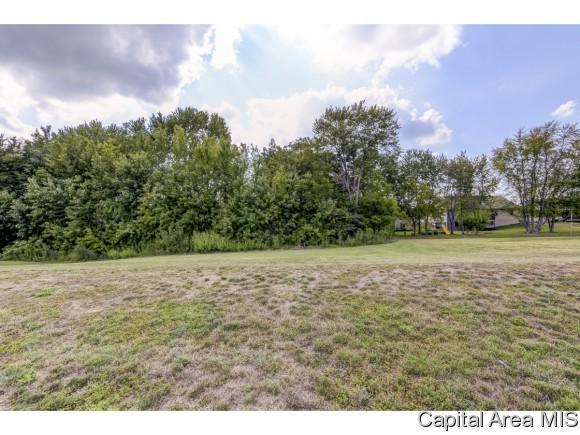 Lot 44 Breckenridge Manor, Chatham, IL 62629 (MLS #185583) :: Killebrew & Co Real Estate Team