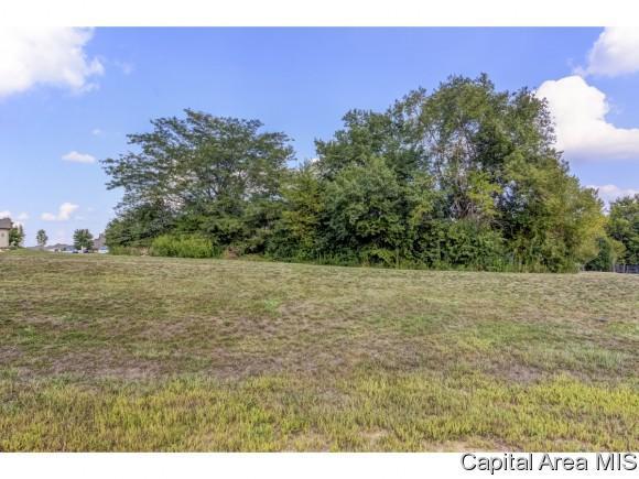 Lot 55 Breckenridge Manor, Chatham, IL 62629 (MLS #185591) :: Killebrew & Co Real Estate Team