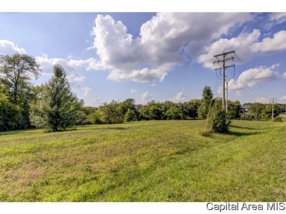 Lot 74 Breckenridge Manor, Chatham, IL 62629 (MLS #185592) :: Killebrew & Co Real Estate Team