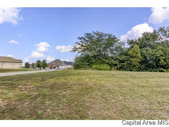 Lot 76 Breckenridge Manor, Chatham, IL 62629 (MLS #185594) :: Killebrew & Co Real Estate Team