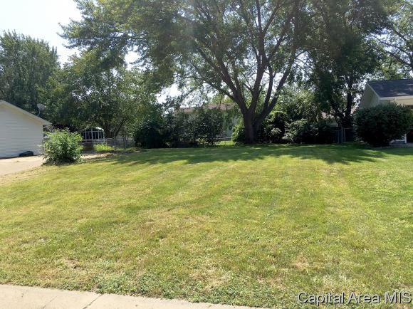 2216 Croydon Drive, Springfield, IL 62703 (MLS #185653) :: Killebrew & Co Real Estate Team