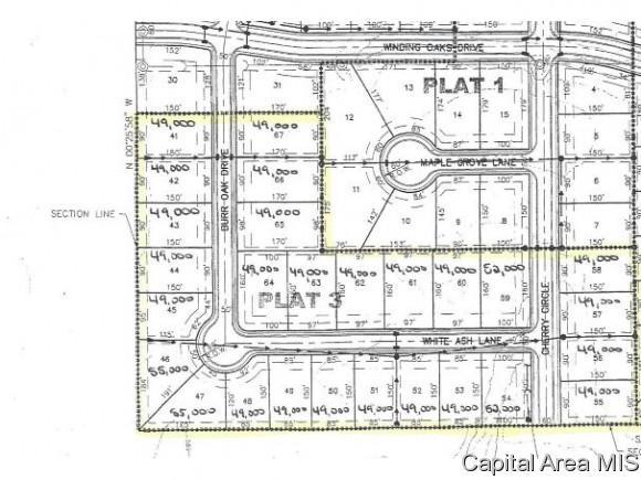 White Ash Lane, Williamsville, IL 62693 (MLS #185749) :: Killebrew & Co Real Estate Team